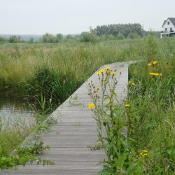 Azobe Nederland voetpad